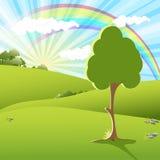 Rainbow Stock Photography
