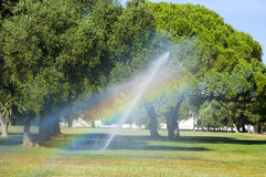 Rainbow. Irrigation in the park and the sunlight through the water spill Royalty Free Stock Images