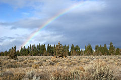 Rainbow. Over sagebrush and junipers Stock Photography