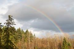 Rainbow Fotografie Stock Libere da Diritti