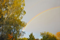 Rainbow above autumn forest Royalty Free Stock Photo