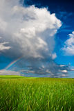 Rainbow above the field Stock Photos