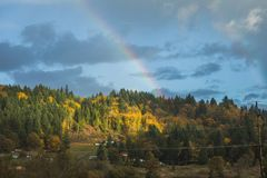 Rainbow Over Fall Trees. Rainbow above lush forest in fall season Royalty Free Stock Image