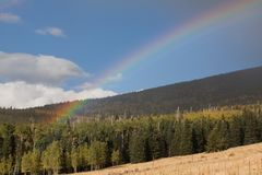 Rainbow above a pine and aspen forest stock photography