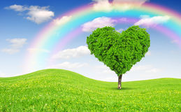 Tree in the shape of heart Stock Image