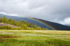 Rainbow Adds Color to Meadows and Forest Royalty Free Stock Image