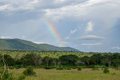 Rainbow against a mountain background, Taita Hills, Kenya. A rainbow against a mountain background at Taita Hills Game Reserve, Kenya royalty free stock photography