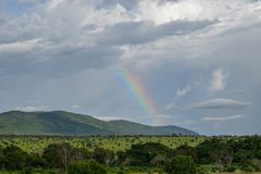 Rainbow against a mountain background, Taita Hills, Kenya. A rainbow against a mountain background at Taita Hills Game Reserve, Kenya royalty free stock photo