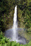 Rainbow at Akaka Falls, Hawaii Stock Photography