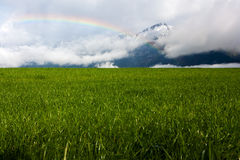 Rainbow in the Alps. Rainbow over a green meadow in the Alps, with snowcapped hills in the background Royalty Free Stock Photos