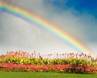 Rainbow And Flowers Stock Photos