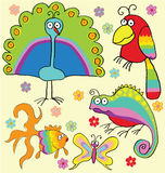 Rainbow animals Stock Images