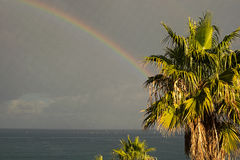Rainbow appeared after heavy rain. She hides behind a palm tree and goes to sea. Marina di Patti. Sicily Royalty Free Stock Image