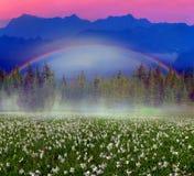 Rainbow-arc Stock Image