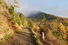Rainbow and autumn colors of the forest. In the mountains, the light after the storm Royalty Free Stock Photos
