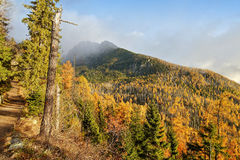Rainbow and autumn colors of the forest. In the mountains, the light after the storm Stock Photo
