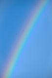 Rainbow. On a background of blue sky and soaring birds royalty free stock images