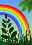 Rainbow backround. Background with rainbow and grass Stock Images