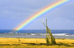 Rainbow Beach Royalty Free Stock Photos
