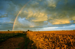 Rainbow on beautiful sky Stock Images