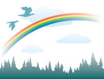 Rainbow, birds and forest Royalty Free Stock Photos