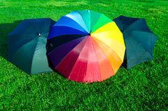 Rainbow and black umbrellas on the grass Royalty Free Stock Photo