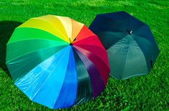Rainbow and black umbrellas on the grass Stock Photos