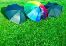 Rainbow and black umbrellas on the grass Stock Image