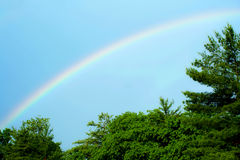 Rainbow with blue skies and trees Stock Image
