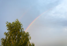 A rainbow. Bright colorful rainbow in the blue sky after rain royalty free stock photo