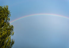 A rainbow. Bright colorful rainbow in the blue sky after rain stock photo