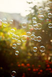 The rainbow bubbles from the bubble blower in sunlight. Bubbles  background Royalty Free Stock Images