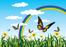 Rainbow and butterflies. Butterflies in a clear nature with rainbow Stock Photos