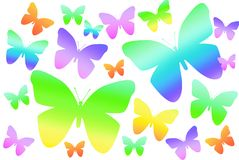 Rainbow butterflies on white background Stock Image