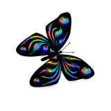 Rainbow Butterfly Illustration Royalty Free Stock Photography