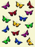 Colorful Butterfly Vector Background - Digital Illustration