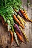 Rainbow carrots Stock Photography