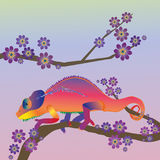Rainbow chameleon. An illustration of a chameleon in rainbow colors in a blossom tree Royalty Free Stock Photo