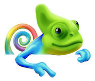 Rainbow chameleon pointing down. An illustration of a cute cartoon rainbow coloured chameleon pointing from above a sign or banner Royalty Free Stock Photography