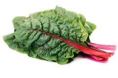 Rainbow chard Royalty Free Stock Photography