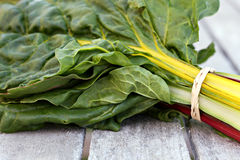 Rainbow Chard Stock Images