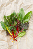 Rainbow Chard Stock Photos