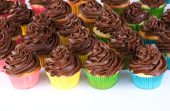 Rainbow of chocolate frosted cupcakes. Lots of chocolate frosted cupcakes in rainbow wrappers Royalty Free Stock Image