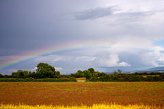 Rainbow on the cloudy sky Stock Image