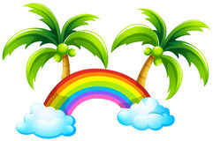 A rainbow and the coconut trees Royalty Free Stock Photography