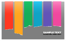 Rainbow color labels. Stripes on gray Stock Image