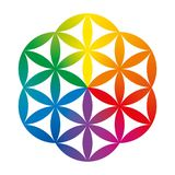 Rainbow colored half of a Flower of Life Royalty Free Stock Photos