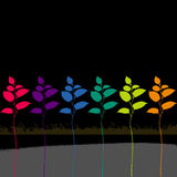 Rainbow Colored Leaves  Stock Photos