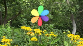 Rainbow colored windmill by Yellowhead plant, 4K stock footage
