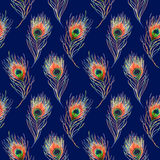 Rainbow colorful peacock bird feather seamless pattern background texture Royalty Free Stock Photos